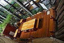Dschungelzimmer der Biosphäre Potsdam