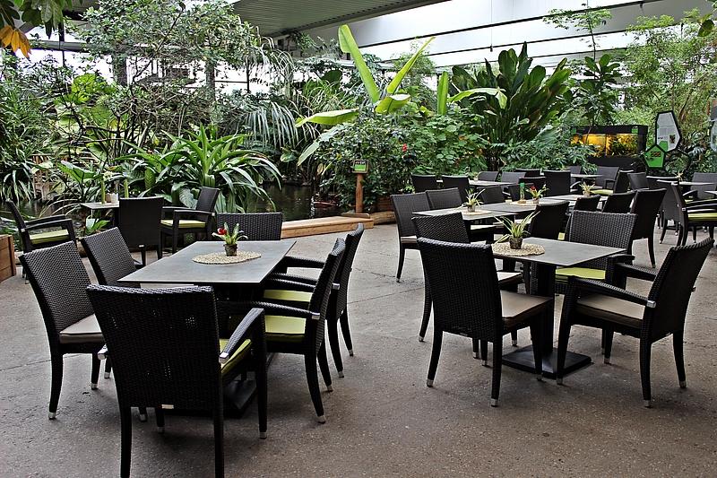 Café Tropencamp Eventlocation Potsdam