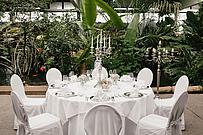 Hochzeitsbestuhlung im Café Tropencamp
