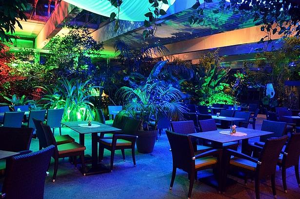 Salsa Abend in der Biosphäre Potsdam