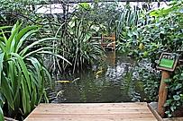 Blick auf den Urwaldsee im Café Tropencamp