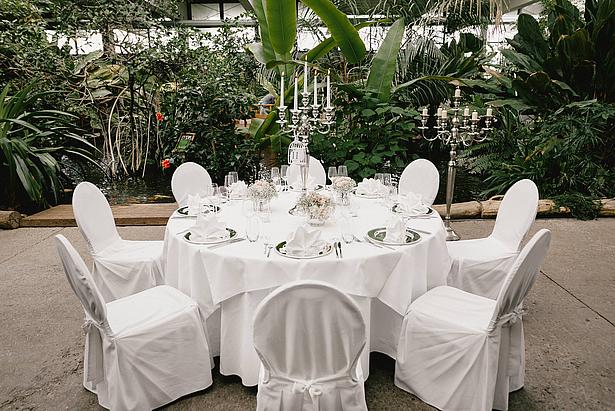 Hochzeit in den Tropen der Biosphäre Potsdam